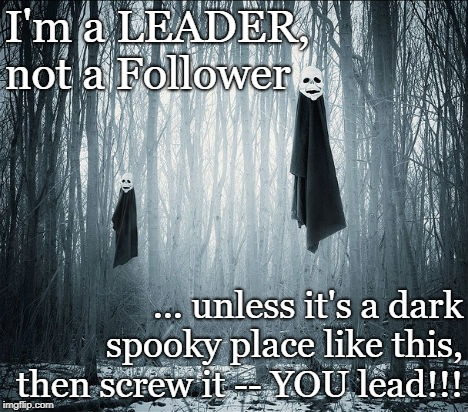 Leader not Follower  | I'm a LEADER, not a Follower ... unless it's a dark spooky place like this, then screw it -- YOU lead!!! | image tagged in spooky,u lead,leader not | made w/ Imgflip meme maker