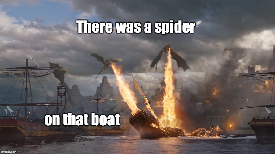 Extra Stength Raid | There was a spider on that boat | image tagged in memes,spider,ship,dragons,fire,raid | made w/ Imgflip meme maker