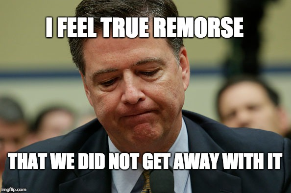 I FEEL TRUE REMORSE THAT WE DID NOT GET AWAY WITH IT | image tagged in james comey humiliated | made w/ Imgflip meme maker