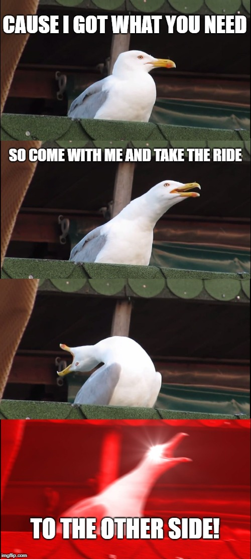 Inhaling Seagull Meme | CAUSE I GOT WHAT YOU NEED SO COME WITH ME AND TAKE THE RIDE TO THE OTHER SIDE! | image tagged in memes,inhaling seagull | made w/ Imgflip meme maker