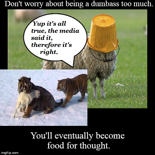 Tiger Eats Sheep | Don't worry about being a dumbass too much. | You'll eventually become food for thought. | image tagged in funny,demotivationals,tiger,sheeple,sheep,dumbass | made w/ Imgflip demotivational maker