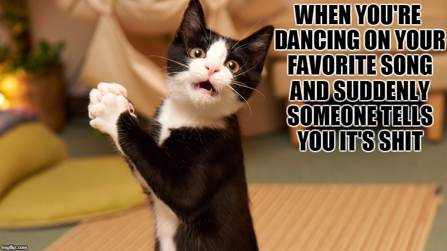Fun ruined, damn humans. | WHEN YOU'RE DANCING ON YOUR FAVORITE SONG AND SUDDENLY SOMEONE TELLS YOU IT'S SHIT | image tagged in cats,cat,funny cat memes,funny cats,applause,shocked cat | made w/ Imgflip meme maker