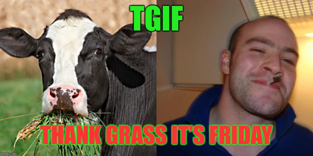 Happy 420 Friday | TGIF THANK GRASS IT'S FRIDAY | image tagged in happy friday,420,atheism,christianity,tgif,funny memes | made w/ Imgflip meme maker
