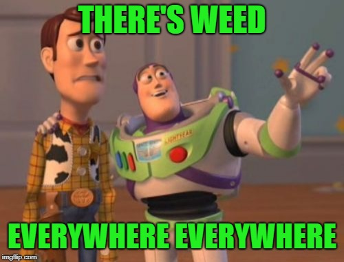 X, X Everywhere Meme | THERE'S WEED EVERYWHERE EVERYWHERE | image tagged in memes,x,x everywhere,x x everywhere | made w/ Imgflip meme maker