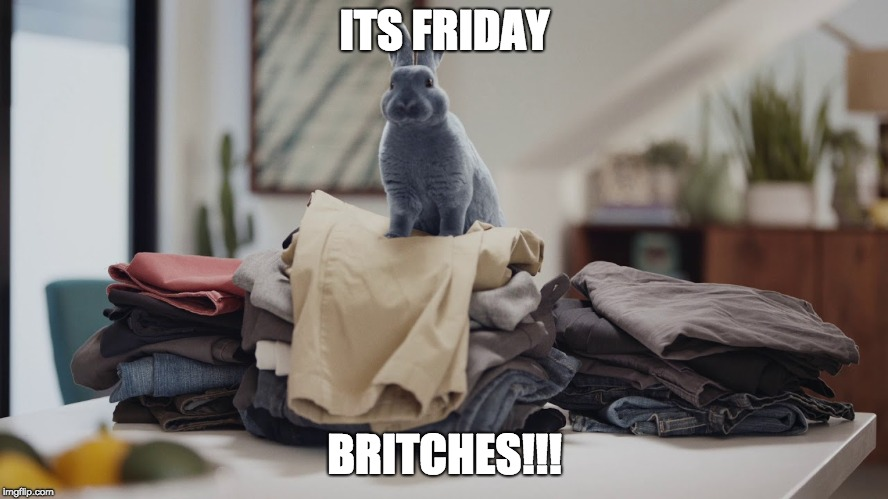 Its Friday Britches | ITS FRIDAY BRITCHES!!! | image tagged in friday,bunny,pants,britches,funny | made w/ Imgflip meme maker