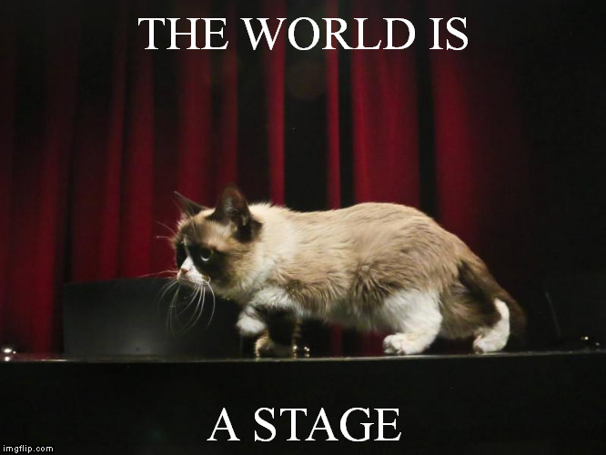 THE WORLD IS A STAGE | made w/ Imgflip meme maker