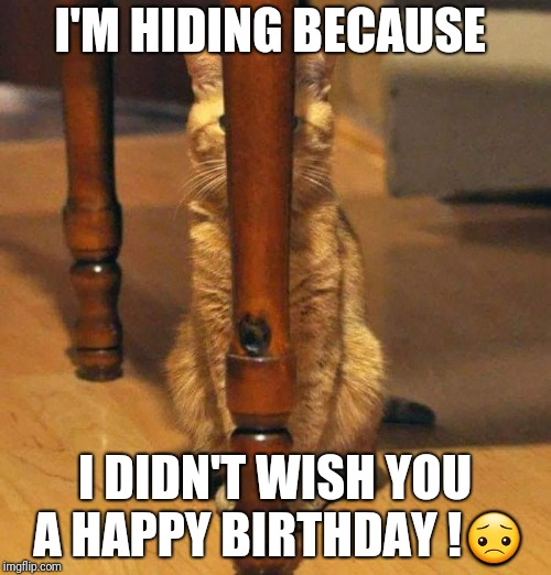 I'M HIDING BECAUSE I DIDN'T WISH YOU A HAPPY BIRTHDAY ! | image tagged in i'm hiding because | made w/ Imgflip meme maker