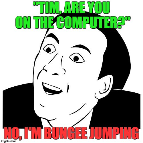 "Rhetorical Questions | ""TIM, ARE YOU ON THE COMPUTER?"" NO, I'M BUNGEE JUMPING 