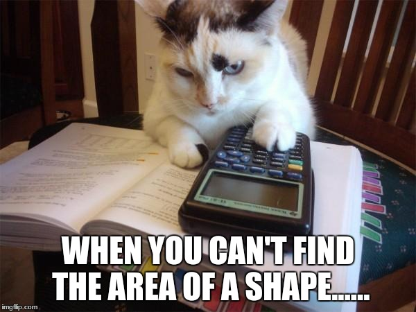 Math cat | WHEN YOU CAN'T FIND THE AREA OF A SHAPE...... | image tagged in math cat | made w/ Imgflip meme maker