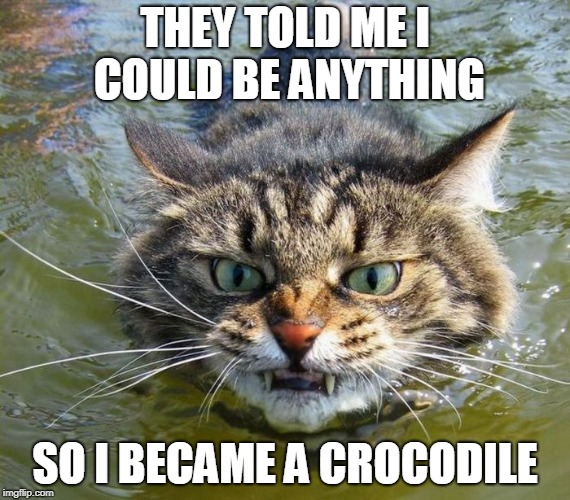 Follow Your Dreams | THEY TOLD ME I COULD BE ANYTHING SO I BECAME A CROCODILE | image tagged in cat,dreams,crocodile | made w/ Imgflip meme maker