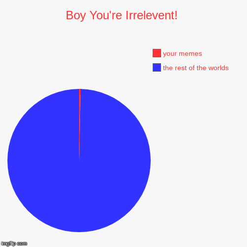 IRRELEVENT! | Boy You're Irrelevent! | the rest of the worlds, your memes | image tagged in funny,pie charts | made w/ Imgflip pie chart maker