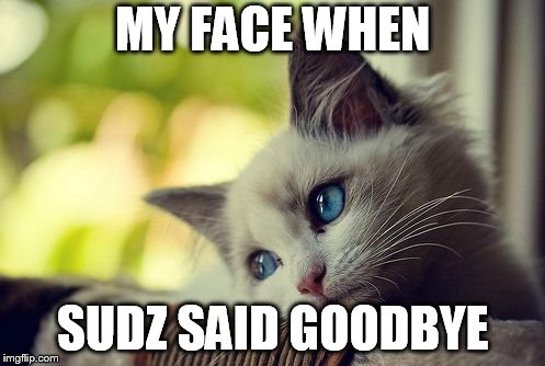 First World Problems Cat | MY FACE WHEN SUDZ SAID GOODBYE | image tagged in memes,first world problems cat | made w/ Imgflip meme maker