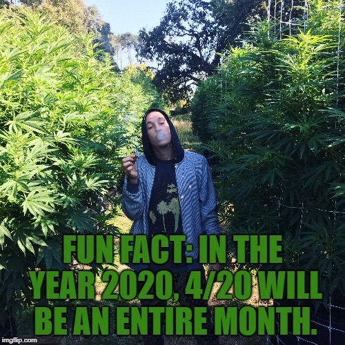 FUN FACT: IN THE YEAR 2020, 4/20 WILL BE AN ENTIRE MONTH. | image tagged in 4/20,funny,memes,funny memes | made w/ Imgflip meme maker