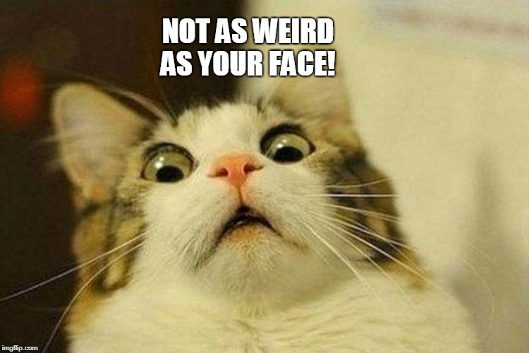 NOT AS WEIRD AS YOUR FACE! | made w/ Imgflip meme maker