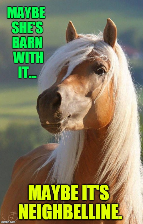 Horse Sense: On Beauty | MAYBE SHE'S BARN  WITH IT... MAYBE IT'S NEIGHBELLINE. | image tagged in vince vance,horse,make-up,palomino,maybelline | made w/ Imgflip meme maker
