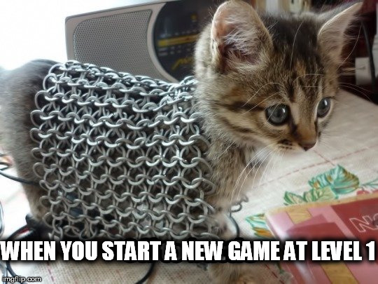 WHEN YOU START A NEW GAME AT LEVEL 1 | made w/ Imgflip meme maker