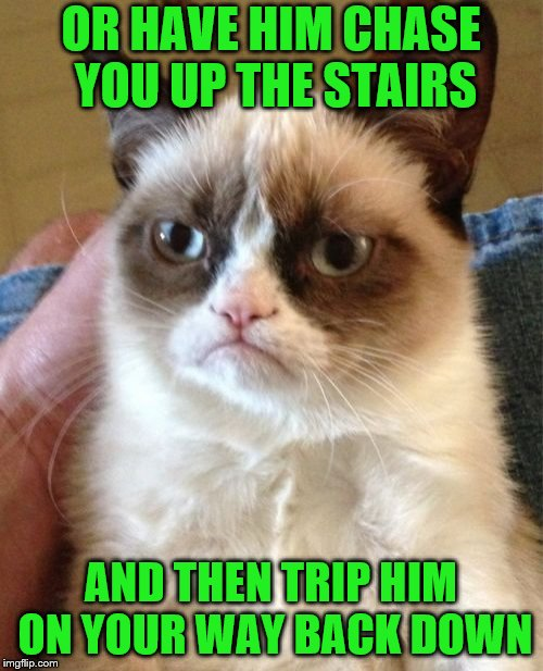 Grumpy Cat Meme | OR HAVE HIM CHASE YOU UP THE STAIRS AND THEN TRIP HIM ON YOUR WAY BACK DOWN | image tagged in memes,grumpy cat | made w/ Imgflip meme maker