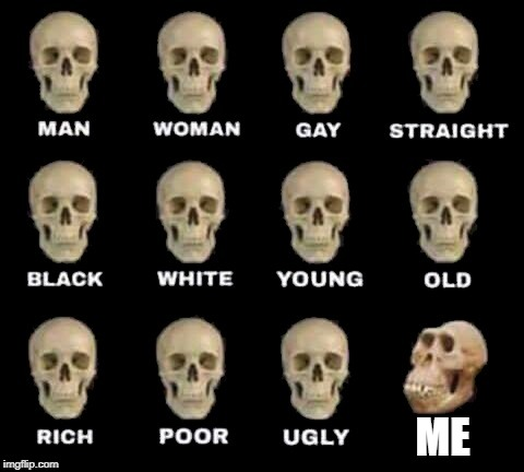 ME | image tagged in man woman gay straight skull | made w/ Imgflip meme maker