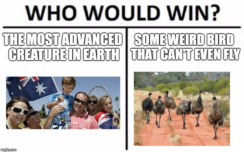 Who Would Win? Meme | THE MOST ADVANCED CREATURE IN EARTH SOME WEIRD BIRD THAT CAN'T EVEN FLY | image tagged in memes,who would win | made w/ Imgflip meme maker