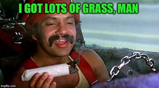 I GOT LOTS OF GRASS, MAN | made w/ Imgflip meme maker