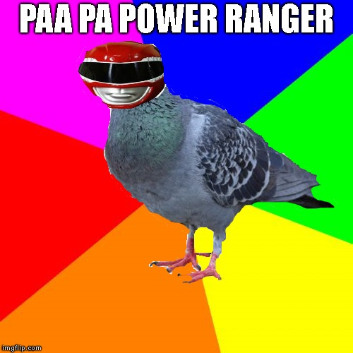 dove ranger!!1 | PAA PA POWER RANGER | image tagged in dove | made w/ Imgflip meme maker