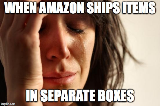 First World Problems | WHEN AMAZON SHIPS ITEMS IN SEPARATE BOXES | image tagged in memes,first world problems | made w/ Imgflip meme maker