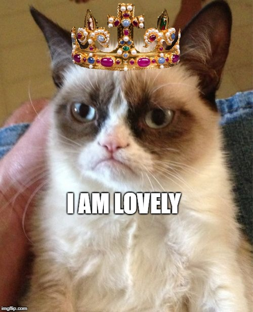 Grumpy Cat Meme | I AM LOVELY | image tagged in memes,grumpy cat | made w/ Imgflip meme maker