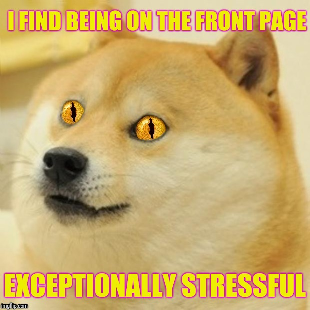 Doge Snake Eyes | I FIND BEING ON THE FRONT PAGE EXCEPTIONALLY STRESSFUL | image tagged in doge snake eyes,doge,front page | made w/ Imgflip meme maker