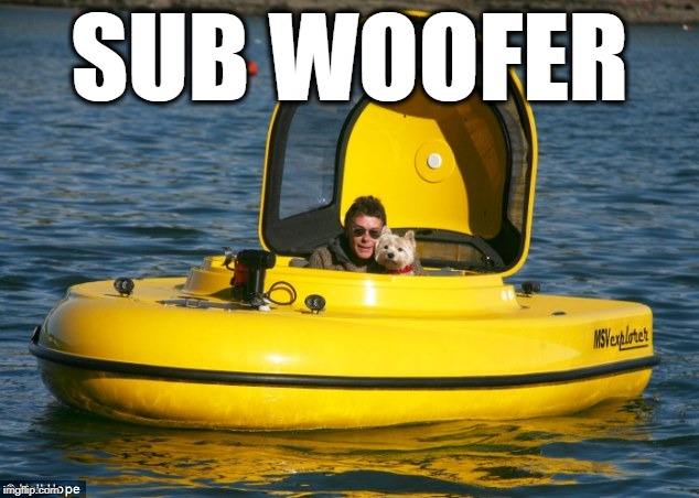 SUB WOOFER | image tagged in sub woofer 1 | made w/ Imgflip meme maker