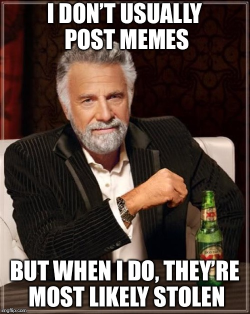 The Average Imgflip User | I DON'T USUALLY POST MEMES BUT WHEN I DO, THEY'RE MOST LIKELY STOLEN | image tagged in memes,the most interesting man in the world | made w/ Imgflip meme maker