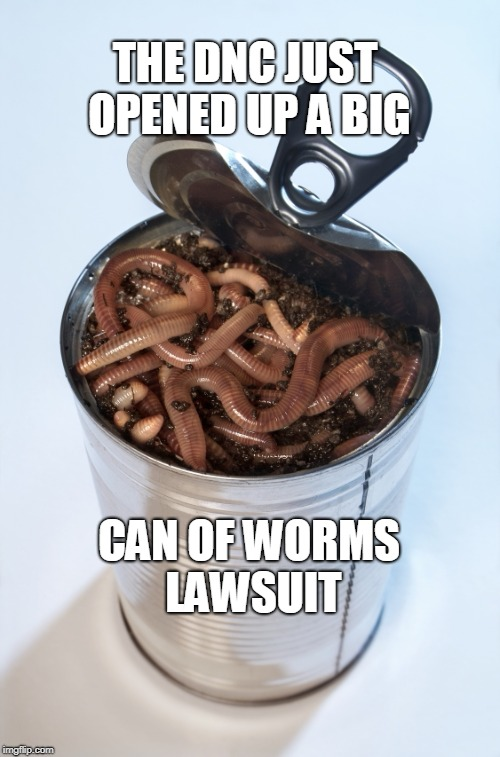 Can of worms | THE DNC JUST OPENED UP A BIG CAN OF WORMS LAWSUIT | image tagged in can of worms | made w/ Imgflip meme maker
