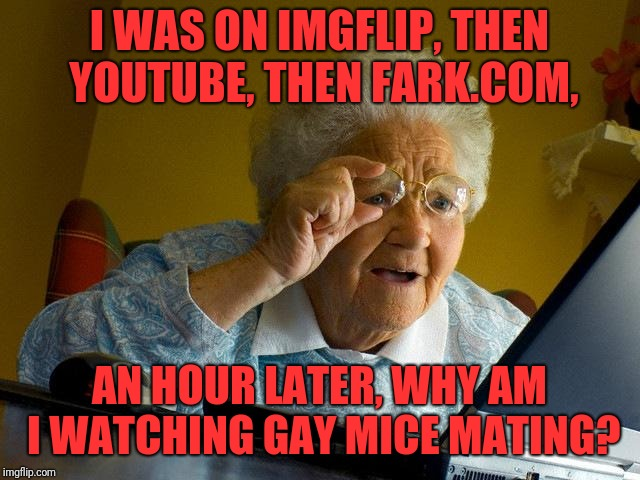 It happens to everyone | I WAS ON IMGFLIP, THEN YOUTUBE, THEN FARK.COM, AN HOUR LATER, WHY AM I WATCHING GAY MICE MATING? | image tagged in memes,grandma finds the internet | made w/ Imgflip meme maker