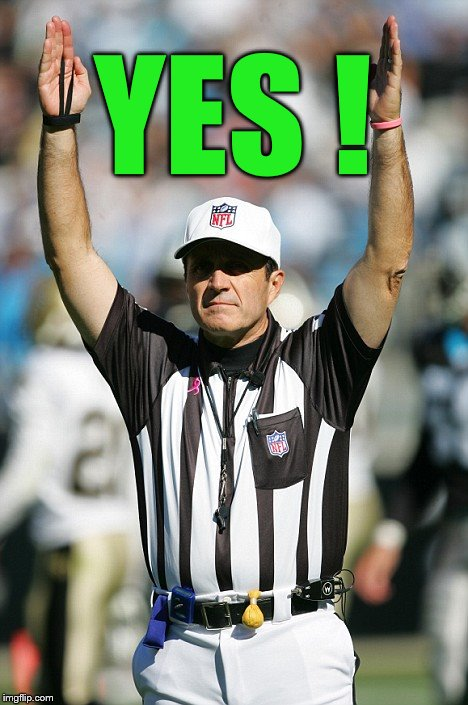 TOUCHDOWN! | YES ! | image tagged in touchdown | made w/ Imgflip meme maker