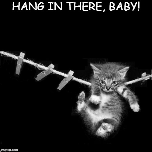 HANG IN THERE, BABY! | made w/ Imgflip meme maker
