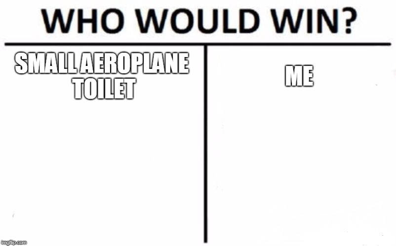 Reality Hurts | SMALL AEROPLANE TOILET ME | image tagged in memes,who would win,aeroplane,toilet humor,toilet | made w/ Imgflip meme maker