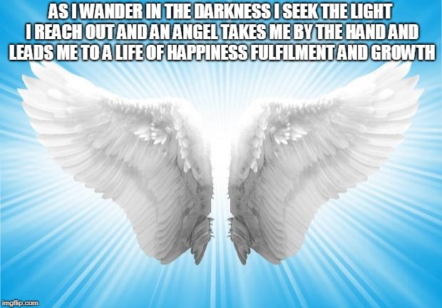 Angels | AS I WANDER IN THE DARKNESS I SEEK THE LIGHT I REACH OUT AND AN ANGEL TAKES ME BY THE HAND AND LEADS ME TO A LIFE OF HAPPINESS FULFILMENT AN | image tagged in angels | made w/ Imgflip meme maker