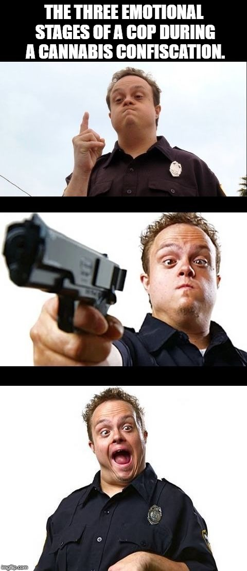 FREEZE! | THE THREE EMOTIONAL STAGES OF A COP DURING A CANNABIS CONFISCATION. | image tagged in copssssssss | made w/ Imgflip meme maker