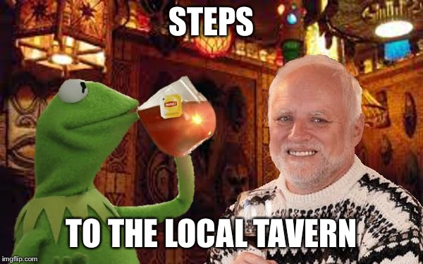 Harold and Kermit at the Oasis Lounge | STEPS TO THE LOCAL TAVERN | image tagged in harold and kermit at the oasis lounge | made w/ Imgflip meme maker