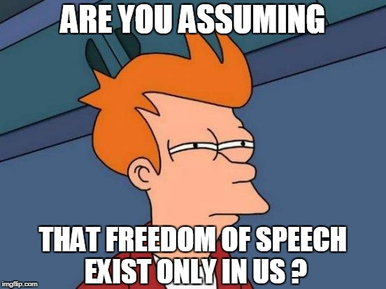 Futurama Fry Meme | ARE YOU ASSUMING THAT FREEDOM OF SPEECH EXIST ONLY IN US ? | image tagged in memes,futurama fry | made w/ Imgflip meme maker