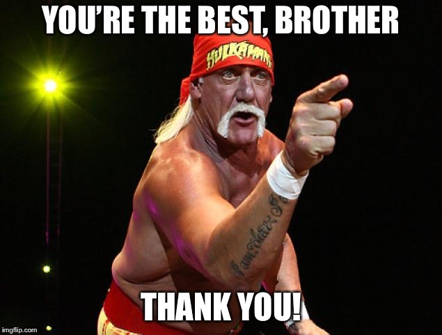 Hulk Hogan  | YOU'RE THE BEST, BROTHER THANK YOU! | image tagged in hulk hogan | made w/ Imgflip meme maker