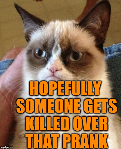 Grumpy Cat Meme | HOPEFULLY SOMEONE GETS KILLED OVER THAT PRANK | image tagged in memes,grumpy cat | made w/ Imgflip meme maker