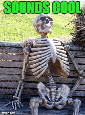 Waiting Skeleton Meme | SOUNDS COOL | image tagged in memes,waiting skeleton | made w/ Imgflip meme maker