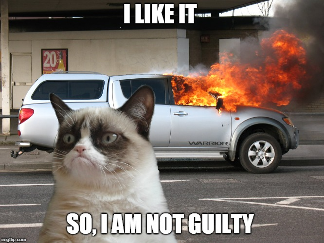 Grumpy Cat Fire Car | I LIKE IT SO, I AM NOT GUILTY | image tagged in grumpy cat fire car | made w/ Imgflip meme maker