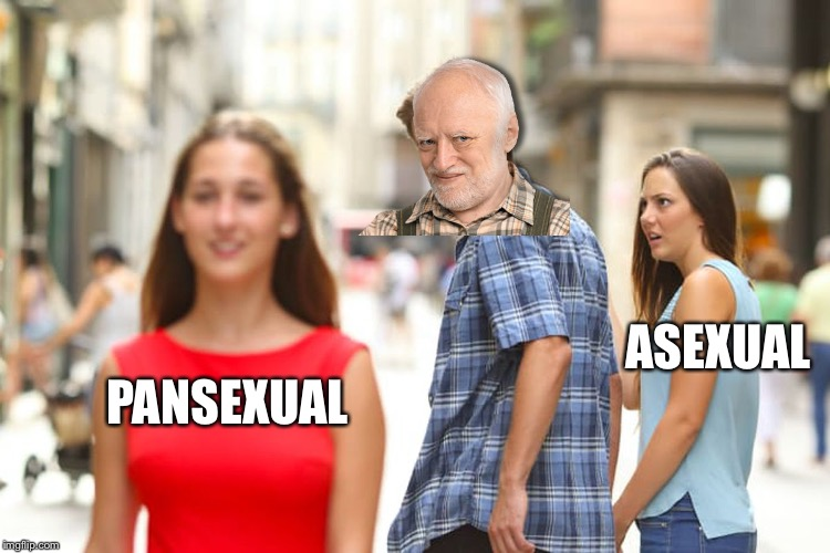 Distracted Harold | PANSEXUAL ASEXUAL | image tagged in memes,distracted boyfriend,harold likes,hide the pain harold | made w/ Imgflip meme maker