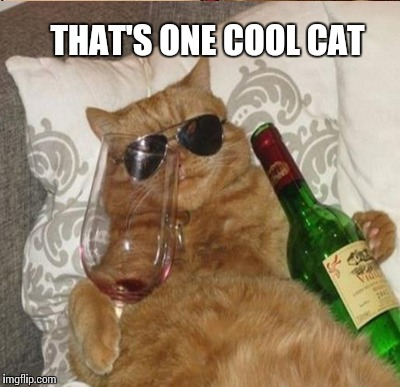 THAT'S ONE COOL CAT | made w/ Imgflip meme maker