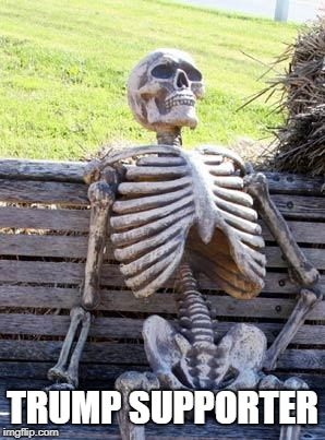 Waiting Skeleton Meme | TRUMP SUPPORTER | image tagged in memes,waiting skeleton | made w/ Imgflip meme maker