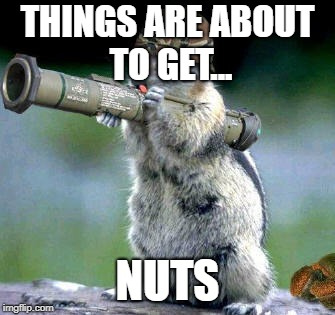 Bazooka Squirrel | THINGS ARE ABOUT TO GET... NUTS | image tagged in memes,bazooka squirrel | made w/ Imgflip meme maker