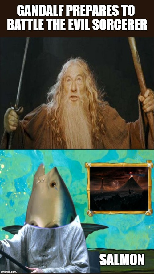 Lord of the Bottom | GANDALF PREPARES TO BATTLE THE EVIL SORCERER SALMON | image tagged in salmon solomon sarbon surmon surename | made w/ Imgflip meme maker