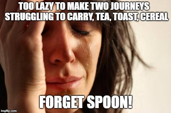 First World Problems Meme | TOO LAZY TO MAKE TWO JOURNEYS   STRUGGLING TO CARRY, TEA, TOAST, CEREAL FORGET SPOON! | image tagged in memes,first world problems | made w/ Imgflip meme maker