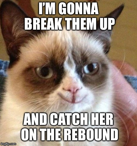 grumpy smile | I'M GONNA BREAK THEM UP AND CATCH HER ON THE REBOUND | image tagged in grumpy smile | made w/ Imgflip meme maker